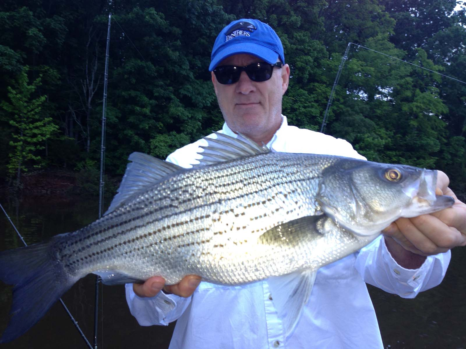 Stripers on tims ford for Tims ford lake fishing report