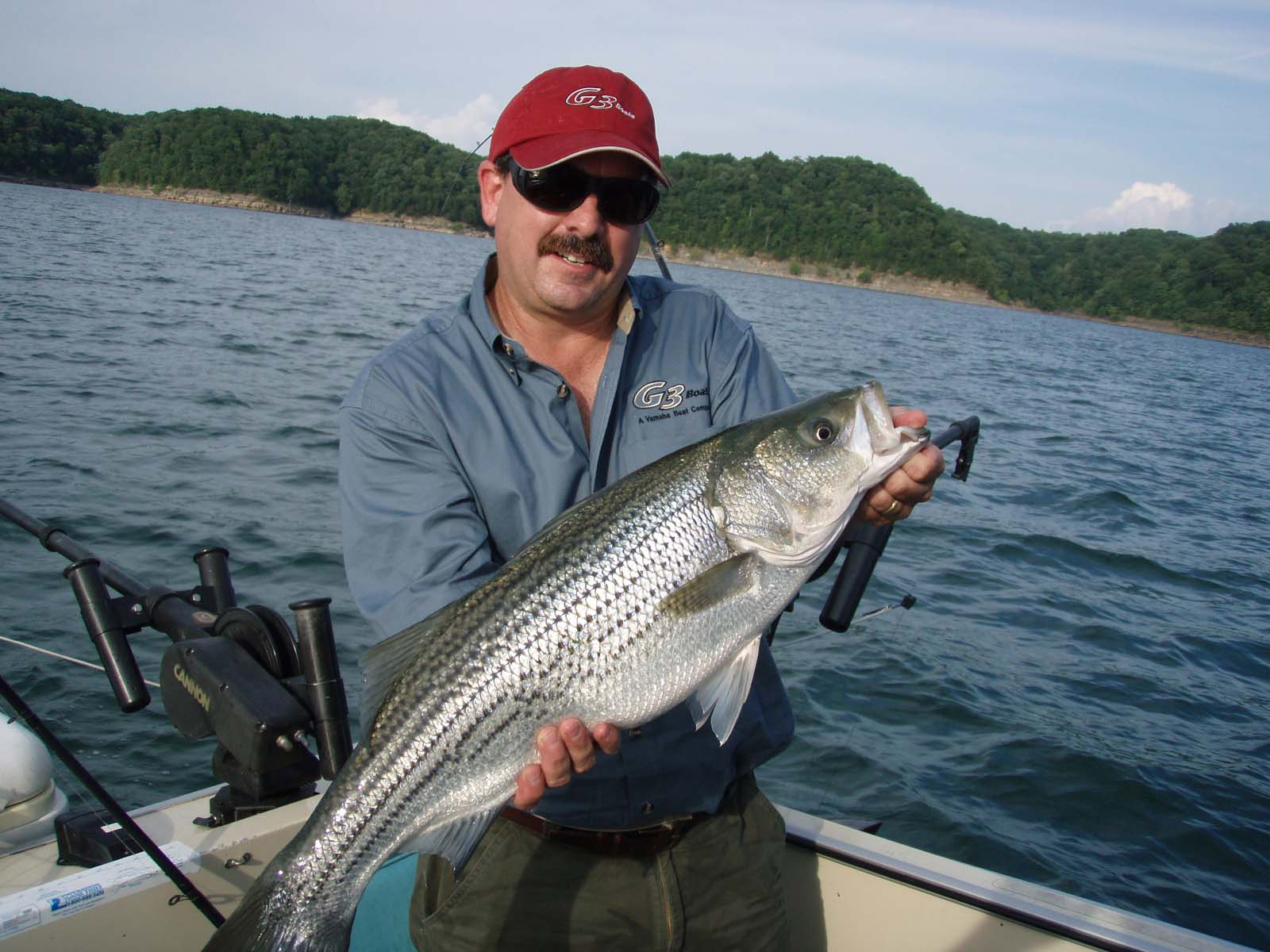 Your fishing trip nashville tn striper fishing with for Tn fishing license online