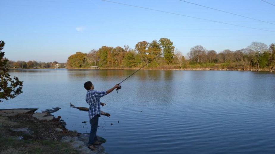 Trophy striper fishing nashville tennessee monster for Old hickory lake fishing